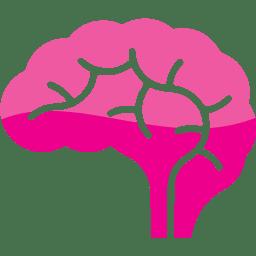 B2B Brain